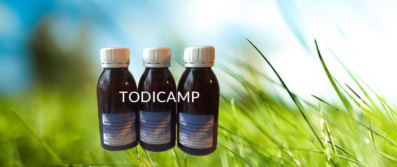Todicamp